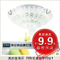白菜价 shiws伟仕特 时尚凤羽水晶节能吸顶灯 9.9元不包邮